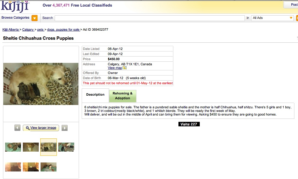edit my kijiji ad btc4a kijiji pet sales and the chs back alley soapbox 10840