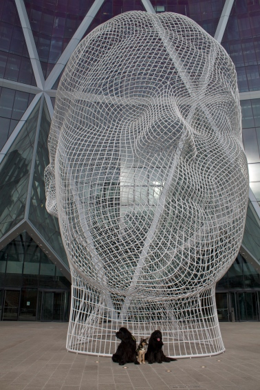 It's called Wonderland, by renowned artist Juame Plensa.