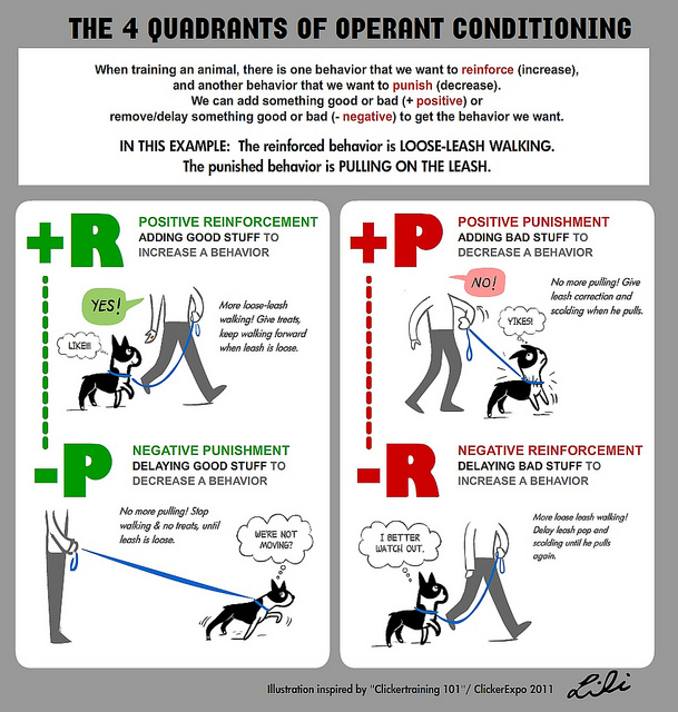 Operant Conditioning | Back Alley Soapbox