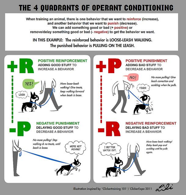 operant conditioning examples alisen berde operant conditioning examples