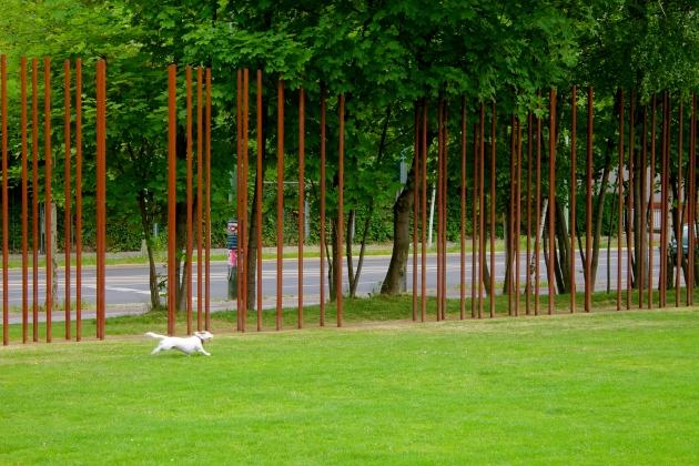 A real dog playing fetch by the Berlin Wall Memorial on Bernauer Straße